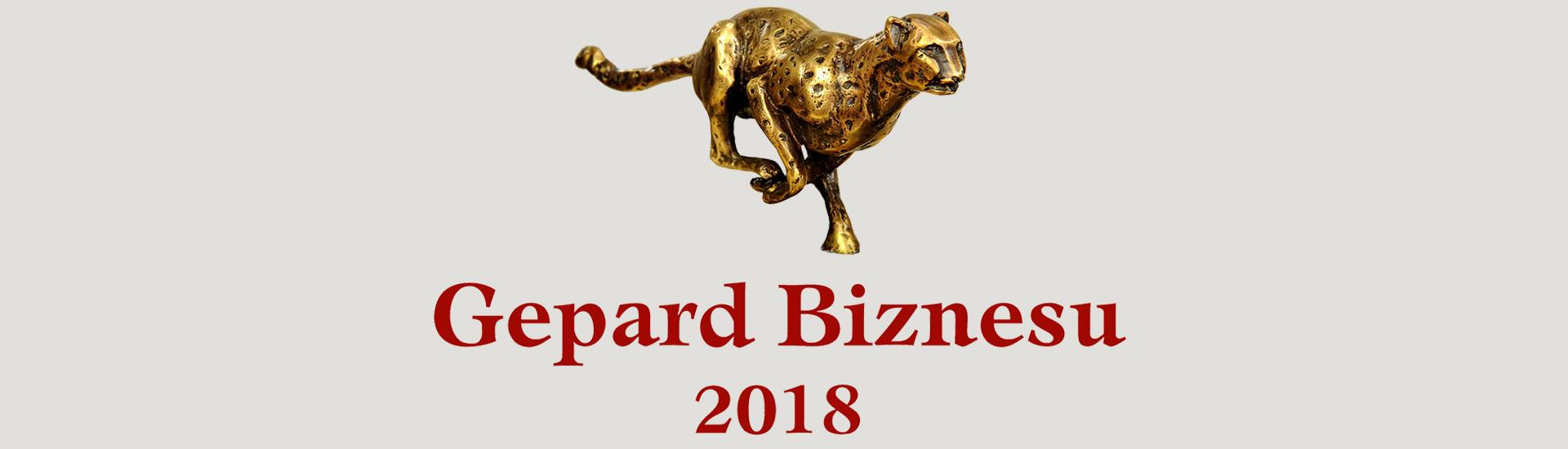Logo-Promocyjne-Gepard-Biznesu-2018-ze-statuetka